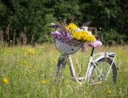 polkupyörä ja kukkakimppu kedolla